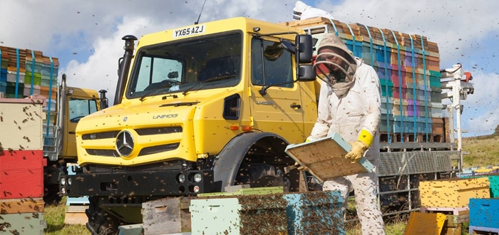 Image of Bee Keeper with mercedes Truck