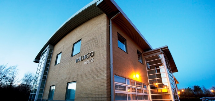 Indigo Expands Technical Teams With 4 New Members Added For Start Of 2019.