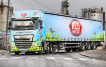 Prohire Awarded Contracts With Red Industries.